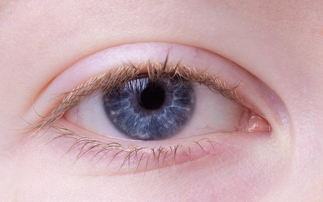 眼-緑内障